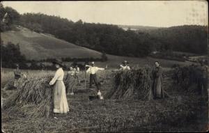Foto Ak Männer und Frauen auf dem Feld, Sense, Heuernte