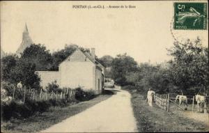 Ak Fortan Loir et Cher, Avenue de la Gare, Pferde