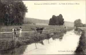 Ak Lyons la Forêt Eure, La Vallee de la Lieure a Rosay