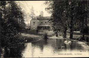 Ak Boissy-le-Châtel Seine et Marne, Le Chateau, vue extérieure, etang, cygnes