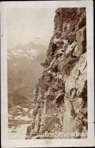 Ak Bergsteiger, Beim Edelweiß Klauben