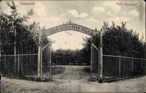 Ak Ciechocinek Hermannsbad Polen, Park Sosnowy