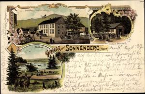 Litho Sonnenberg Rodewitz Schirgiswalde Kirschau in Sachsen, Restaurant Oderteich