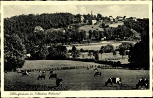 Ak Völlinghausen Möhnesee in NRW, Teilansicht vom Ort mit Umgebung, Kühe auf der Weide