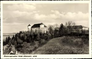 Ak Ahorn Hohenstein, Forschungsinstitut Schloss Hohenstein, Panoramaansicht
