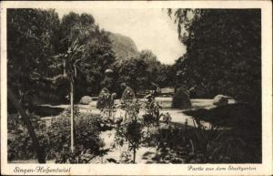 Ak Singen Hohentwiel Baden Württemberg, Partie aus dem Stadtgarten, Palme