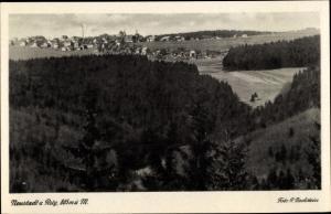 Foto Ak  Neustadt am Rennsteig Großbreitenbach Thüringen, Panorama vom Ort