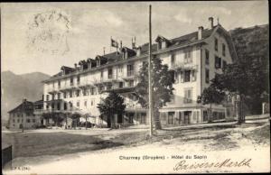 Ak Charmey Freiburg, Hotel du Sapin