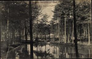 Ak Bad Lippspringe in Westfalen, Waldseen mit Gomdesen Quelle