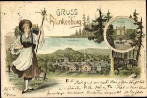 Litho Blankenburg am Harz, Eberstein, Panorama, Dame in Tracht