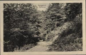 Ak Rengsdorf im Westerwald Rheinland Pfalz, Wald, Pionierweg