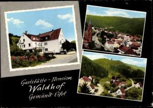 Ak Gemünd Schleiden in der Eifel, Teilansichten, Gaststätte Pension Waldhof