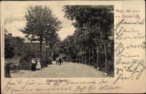 Ak Zierzow Grabow im Landkreis Ludwigslust-Parchim, Chaussee Ansicht