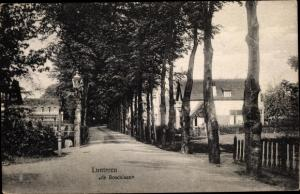 Ak Lunteren Ede Gelderland, de Boschlaan