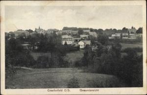 Ak Pawłowiczki Pawlowitzke Gnadenfeld Oberschlesien, Gesamtansicht