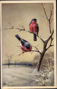 Künstler Ak Vögel, Winterpartie