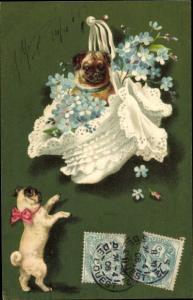 Künstler Ak Hunde, Möpse