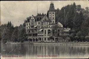 Ak Hertenstein Kanton Luzern, Schloss Hotel Hertenstein