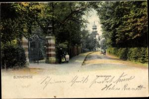 Ak Hamburg Altona Blankenese, Norderstraße