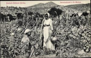 Ak Windhoek Windhuk Namibia Deutsch Südwestafrika, Plantage, Feldarbeit
