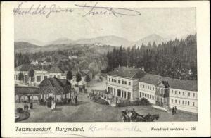 Künstler Ak Prokopp, Bad Tatzmannsdorf im Burgenland, Karolinenvilla