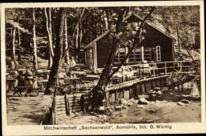 Ak Aumühle Schleswig Holstein, Milchwirtschaft Sachsenwald