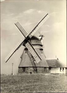 Ak Groß Stieten im Kreis Wismar, VEG Tierzucht, Windmühle, Gaststätte Mecklenburger Mühle