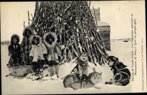 Ak Alaska USA, Inuit, Husky