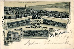Litho Wädenswil Kt Zürich Schweiz, Schloss Bürgli, Villa Weber, Bahnhof, Hotel Engel