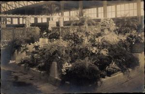 Foto Ak Hamburg Altona, Gartenbau Ausstellung 1925, Blumenhalle