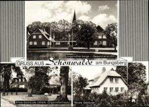 Ak Schönwalde am Bungsberg in Ostholstein, Jugendherberge, altes und neues Gebäude