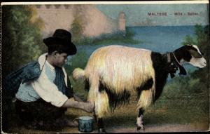 Ak Malta, Milk seller, Mann melkt eine Ziege, Tracht