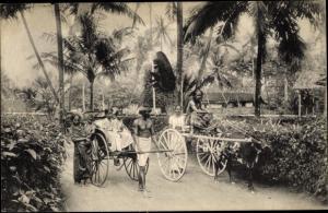 Ak Colombo Ceylon Sri Lanka, Rikschas