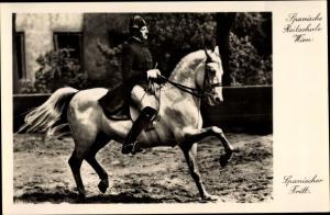 Ak Spanische Reitschule Wien, Pferde Dressur, spanischer Tritt