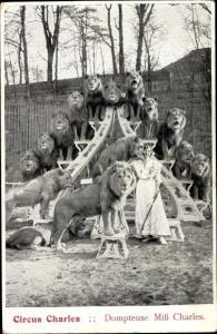 Ak Circus Charles, Dompteuse Miss Charles, Löwen, Tierdressur
