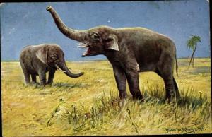 Künstler Ak Müller, M. jun., Zwei Elefanten in der Savanne