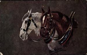 Künstler Ak Walker, Hilda, Zwei angespannte Pferde, Tuck