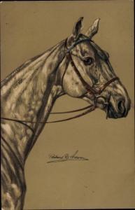 Künstler Ak Pferd, Portrait, Meissner & Buch