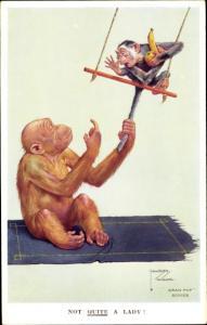 Künstler Ak Wood, Lawson, vermenschlichte Affen, Schaukel, Not quite a Lady