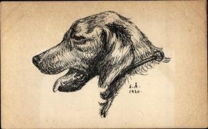 Künstler Ak Profilansicht von einem Hund, Hundeportrait