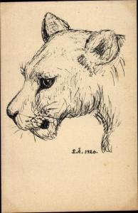 Künstler Ak Portrait von einer Löwin