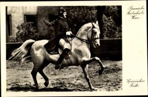Ak Wien, Spanische Reitschule, Reiter, Pferd, Dressur, Spanischer Tritt