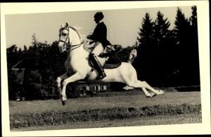 Foto Ak Reiter, weißes Pferd, Dressur