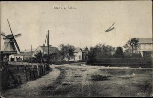 Ak Burg auf der Insel Fehmarn, Straßenpartie, Windmühle