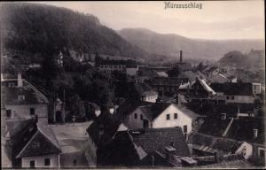 Ak Mürzzuschlag Steiermark, Panorama