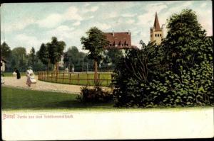 Ak Bâle Basel Stadt Schweiz, Partie aus dem Schützenmattpatk