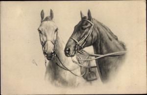 Künstler Ak Zwei Pferde mit Zaumzeug, Theo Stroefer 580 1