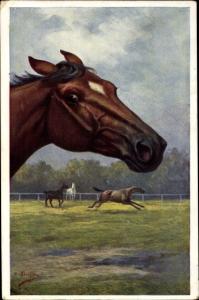 Künstler Ak Pferde auf der Weide, Pferdeportrait, BKWI 892 2