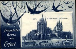 Passepartout Ak Erfurt in Thüringen, Dom, St. Severikirche, Brunnen, Gesamtansicht, Schwalben