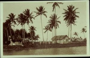 Ak Brasilien, Häuser unter Palmen